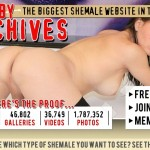 Great pay xxx website to watch top notch shemale stuff