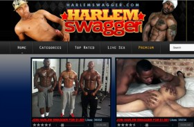 Great premium xxx website with great gay content